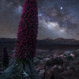 Teide - Via Lattea 4