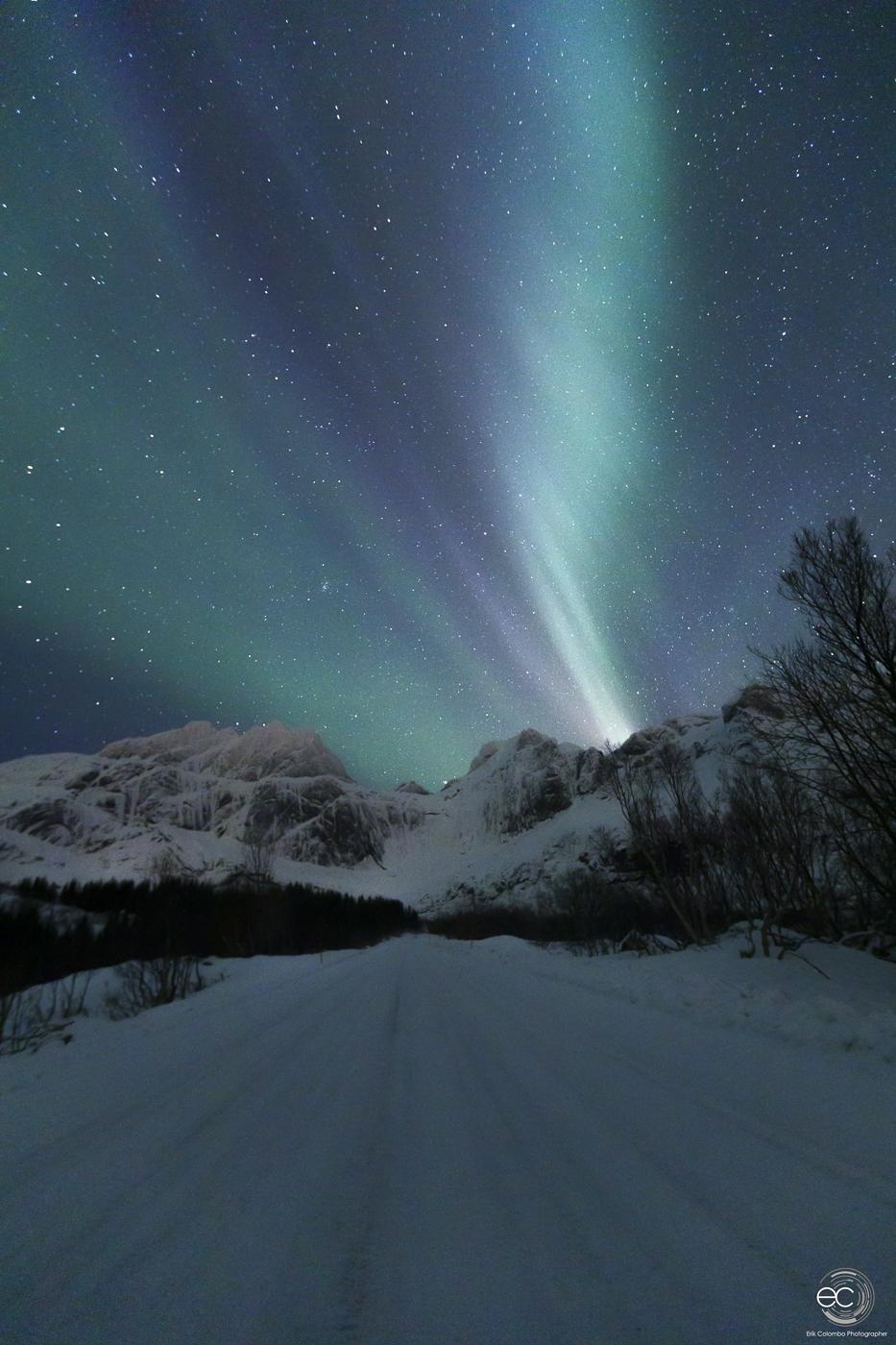Nusfjord - Aurora
